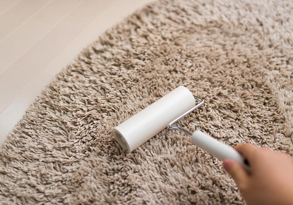 掃除 絨毯 オフィスのカーペットってどうやって掃除したらいいの?