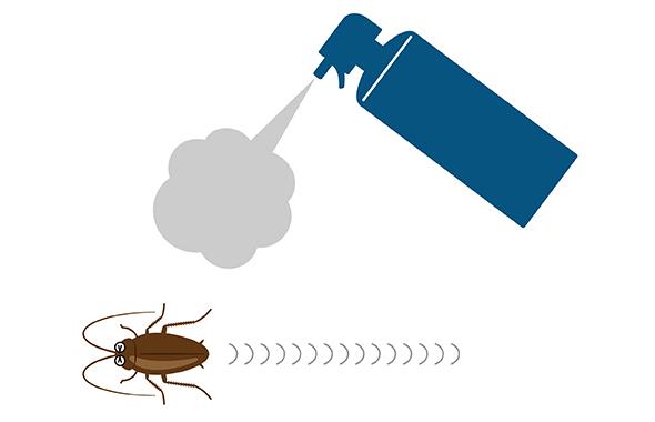 ゴキブリの赤ちゃんの特徴や予防・駆除方法